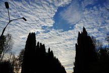 Sky Ciel Небо