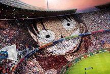 One Piece ☠