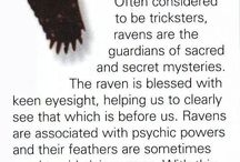 Spirit / Totem Animals / Spiritual totem animals to light yourself with and lead the path