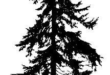 PNW Trees