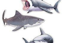 tiburcio