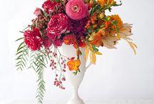 Flower Shop of My Dreams