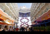 Cruise1st TV Videos / View and get inspired by Cruise 1st!