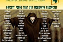 Gmo stuff / The truth about GMO's / by Brenda Royal Draper