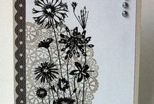 Cards_Black and White / by Deborah Montgomery