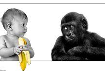 Funny pics!!!