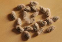 Il mio cotone - My cotton