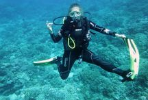 Diving for beginners / Learning to scuba dive is super exciting!