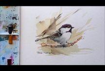 Film vogeltje