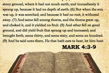 Gospel According to Mark / Bible Verses from the Gospel According to Mark