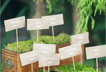 ESCORT CARDS + SEATING CHART