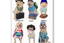 Fun Funny PET Cards