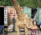 Driftwood Giraffe / Beautiful and individually hand-crafted, our giraffe is made from teak tree roots. These driftwood giraffes are made with a natural resemblance to a real live giraffe and will enhance any garden or other outdoor grounds with their elegant aesthetic. For more information, please visit our webpage, http://www.driftwoodhorse.co.uk/driftwood-giraffe.html or call us on 0845 3731 832