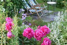 orti e giardini