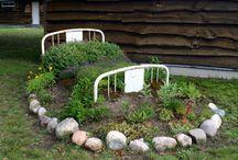 Life Began In a Garden / by Erin Kneolloac
