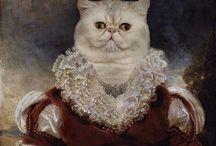 CAT + CAT