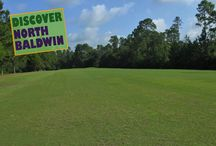 Golfing in North Baldwin County / The North Baldwin area hosts two different golf courses, Holly Hills Municipal Golf Course & Steelwood Golf Course and Country Club
