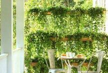 Garden screens.