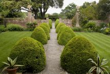 Exterior: Garden / Landscaping inspiration, statues, water features and fountains, fences and gates, pathways... / by Star Willow