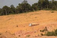 External Pins & Komentar / Pins tentang pertambangan (emas) di Indonesia.