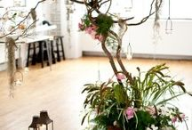 Tablescapes / by Stefani Fisher