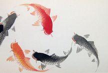 pesci
