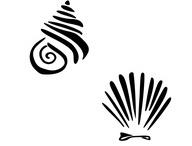 Tatoo Shell