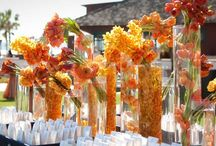 Mango + Tangerine + Orange / Go for fun and funky with some mango and tangerine colors for your wedding. Bouquets, centerpieces and general wedding inspiration. / by Passionate About Peonies