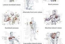 Górna połowa ciała ramiona