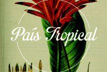 Paìs Tropical / País Tropical Pigalle Carnaval ! Chaque jeudi de l'été, embarquez au Divan du Monde pour tour du globe à coup de Brazilian Soul, Afrobeat, Merengue, Samba, Salsa, Rumba congolaise, Hightlife, sans oublier le Kompa et le BossaJazz.   détails sur http://www.enmemetemps.com/pais-tropical.html