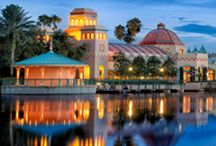 Disney World Hotels and Resorts / A place to talk about all things related to Disney World's awesome hotels and resorts.