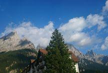Natur Hotel Alpino