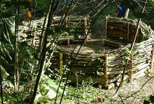 canapé forestier
