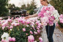 Женщины цветы