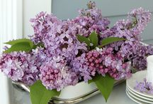 Flower arrangements from your landscape / I always have a vase full of flowers that I cut from my garden and landscape. It is an easy way to bring the beauty of nature indoors, for no cost. Here is a collection arrangements that you can create. / by Viola Nursery and Greenhouse