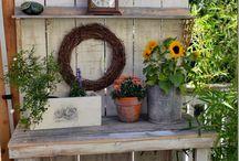 Garden funiseas / Puutarakuvia