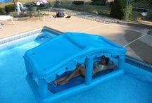 Pool / by Erica Gresham