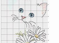 Koty-haft krzyżykowy