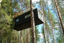 Architecture // Tree Forts