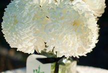 Flowers in Mason Jar