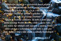 Bible memes cz