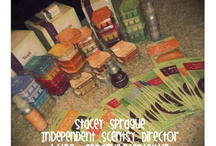 scentsy / by Kathy Theirrien