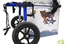 Chariot roulant pour chien / Les chariots roulant pour animaux handicapés vont permettre à votre compagnon de retrouver les joies des balades en famille, des jeux, bref son autonomie. Le chariot offre une aide pour les chiens ou chats âgés, handicapés ou pour récupérer plus facilement après une opération chirurgicale.