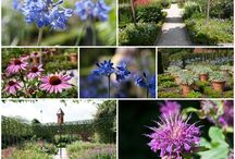 Alnwick Garden / Images from family trips out to #Alnwick #Garden #Northumberland