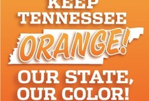 GO VOLS!!!! / by Allison Bower