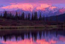 ALASKA / by Shelley Hartmann