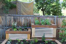 Raised Gardenbeds