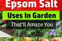 Engelse sout/Epson salt