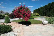 citystonedesign-garden