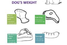 Food and Your Pet / It does matter what food you choose for your pet.  Be sure to know the facts and which ones are harmful.
